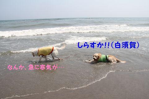20110715-19_R.jpg