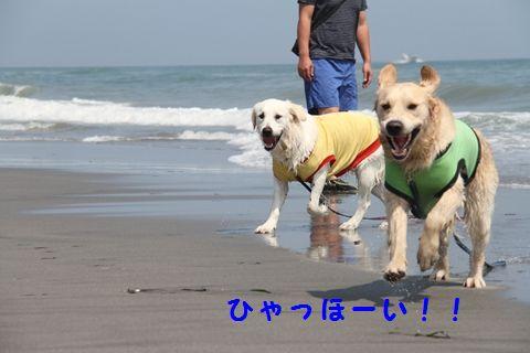 20110715-6_R.jpg
