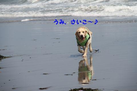 20110715-8_R.jpg