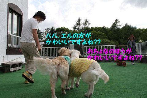 201110614-11_R.jpg