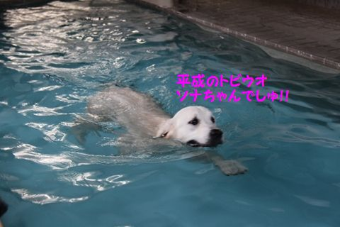 201110614-12_R.jpg
