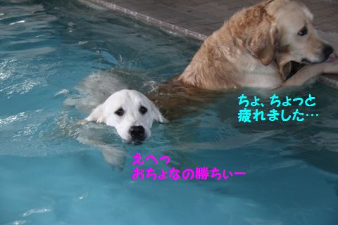 201110614-15_R.jpg