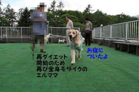 201110614-1_R.jpg