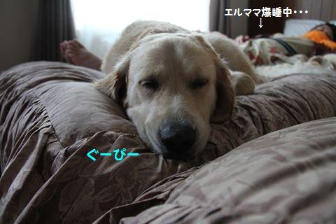 201110614-21_2R.jpg