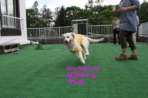 201110614-2_R.jpg