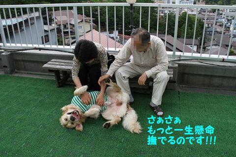 201110614-5_R.jpg