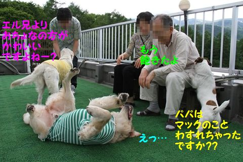 201110614-7_R.jpg