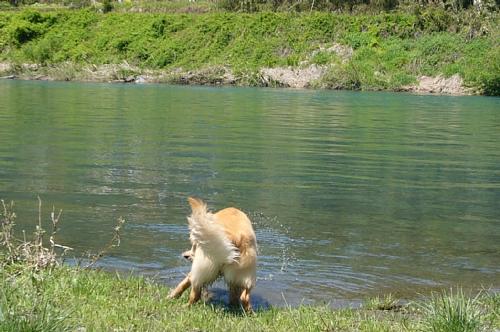 川へ来ました!(100427)