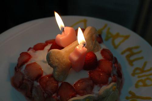 誕生日ケーキ(100618)