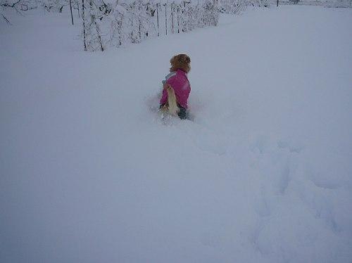 辺りは雪景色