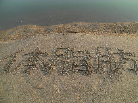 SANY0051_20121027094901.jpg