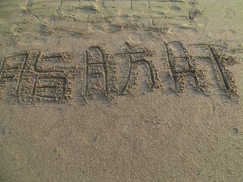 SANY0052_20121027094904.jpg