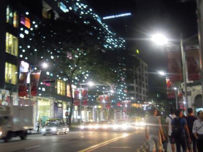 SINGAPORE, JAN, 2011 021