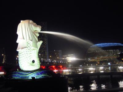 SINGAPORE, JAN, 2011 051