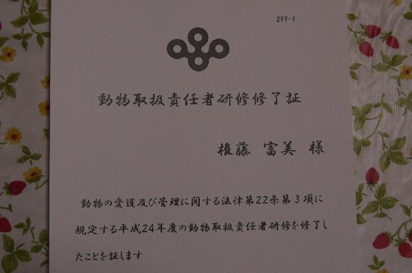 P1060744(1).jpg