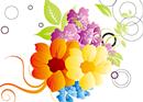image flowers-10s