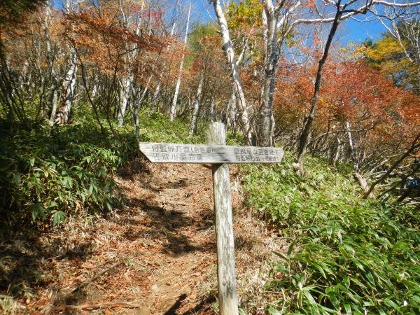 笠取山 101