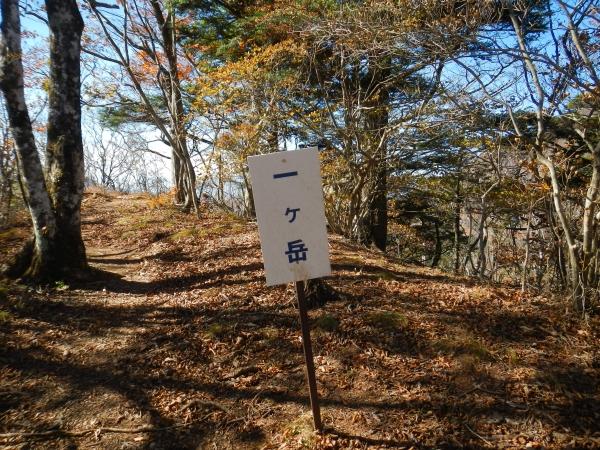 十二ヶ岳 036