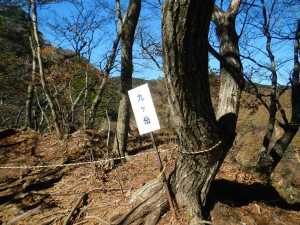 十二ヶ岳 052