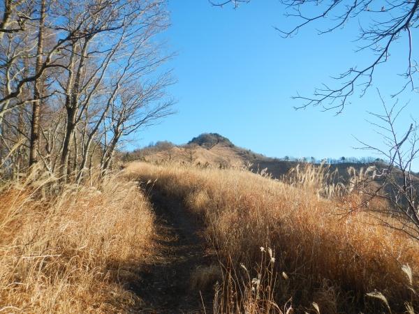 杓子山 006