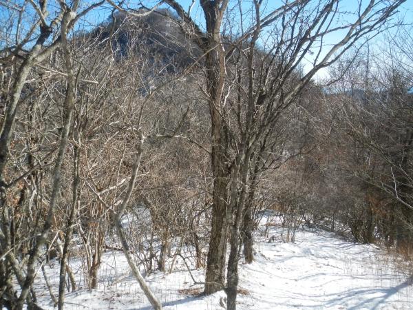 杓子山 029