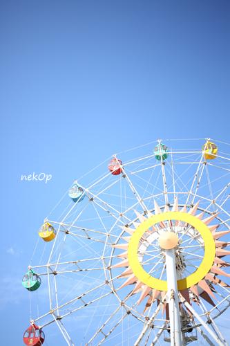 0D2A4662.jpg