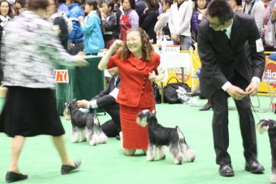 2010ジャパンインター BOB戦 (33)