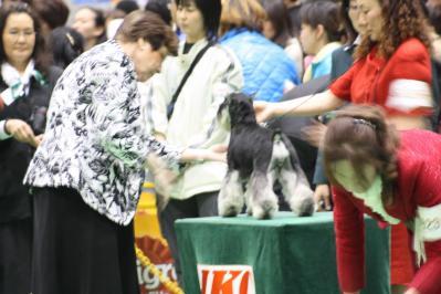 2010ジャパンインター BOB戦(18)