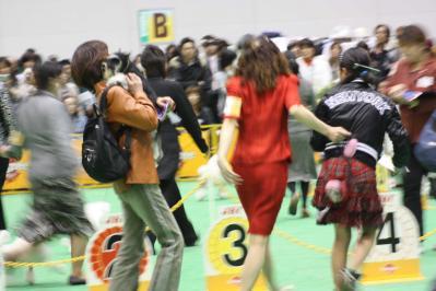 2010ジャパンインター BOB戦(48)