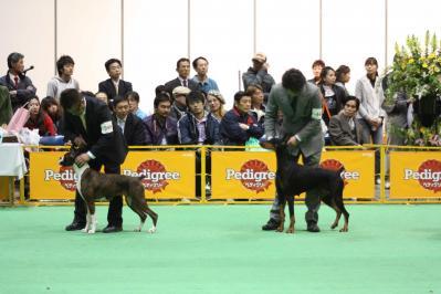 2010ジャパンインターグループ戦 (86)