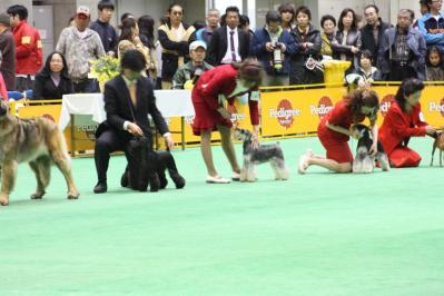 2010ジャパンインターグループ戦(98)