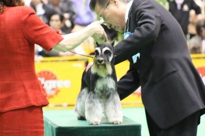 2010ジャパンインター グループ戦 (137)