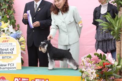 四国インターお立ち台 (68)