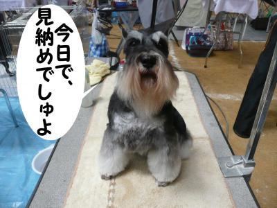 2010近畿インター 009