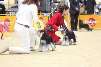 近畿インター2010 (17)