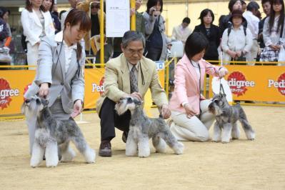 近畿インター2010 (13)