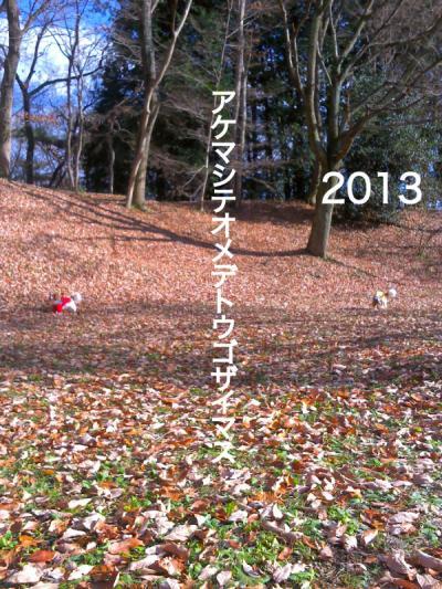2013_convert_20130101082934.jpg