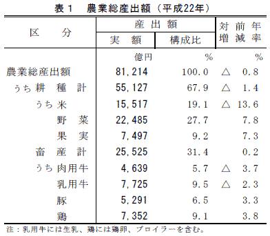 農業生産額(平成22年)tbl_01