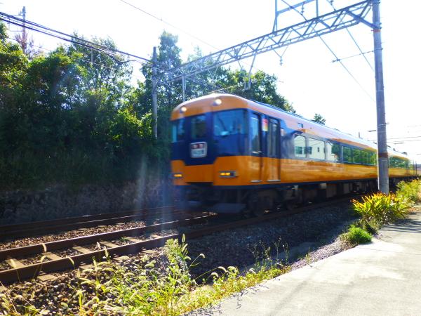 P1030911.jpg