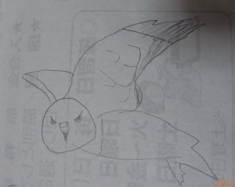 2012_02_12_10.jpg