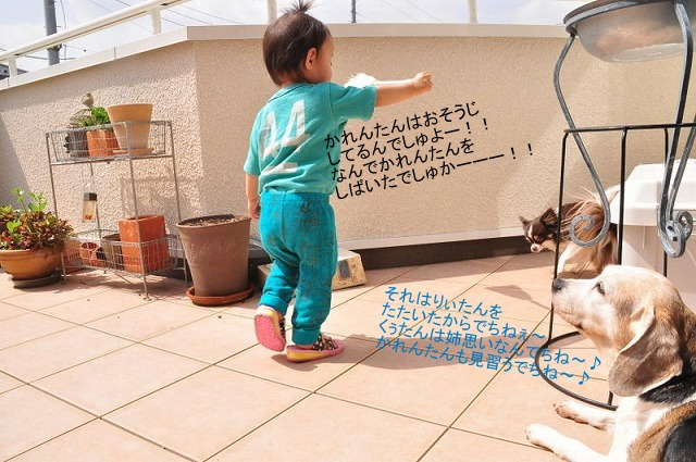 17_20130405215143.jpg