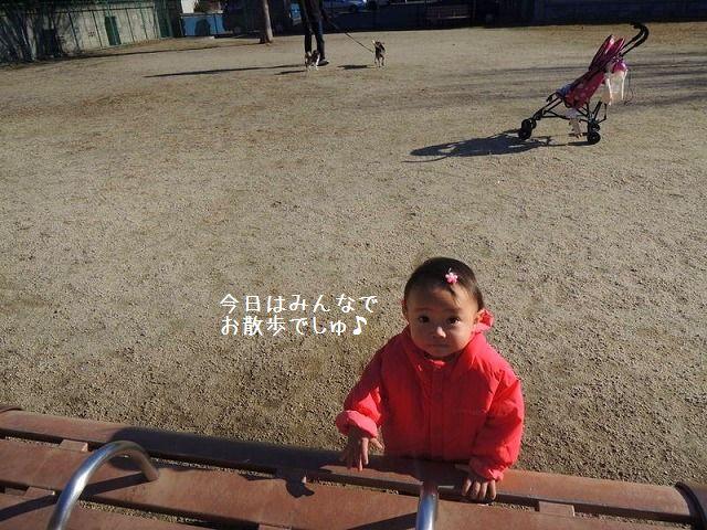 1_20121216235009.jpg