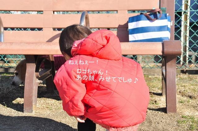4_20130129000607.jpg