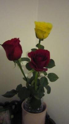 バレンタイン花