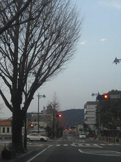 3.3の街路樹