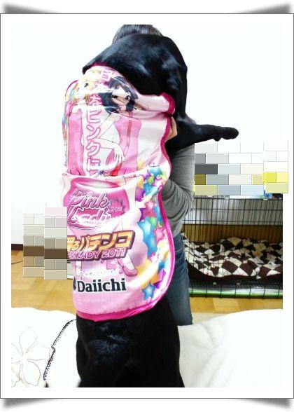 編集_DSC_0180 - ショートカット