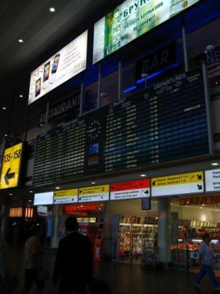 シェメレーチェボ空港Dターミナル