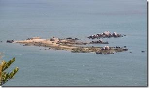 13040302 椹野川に浮かぶ岩礁