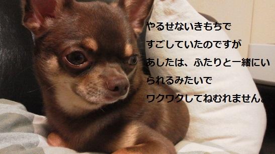 DCIM0666_20130722005342.jpg