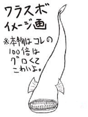 warasubo.jpg